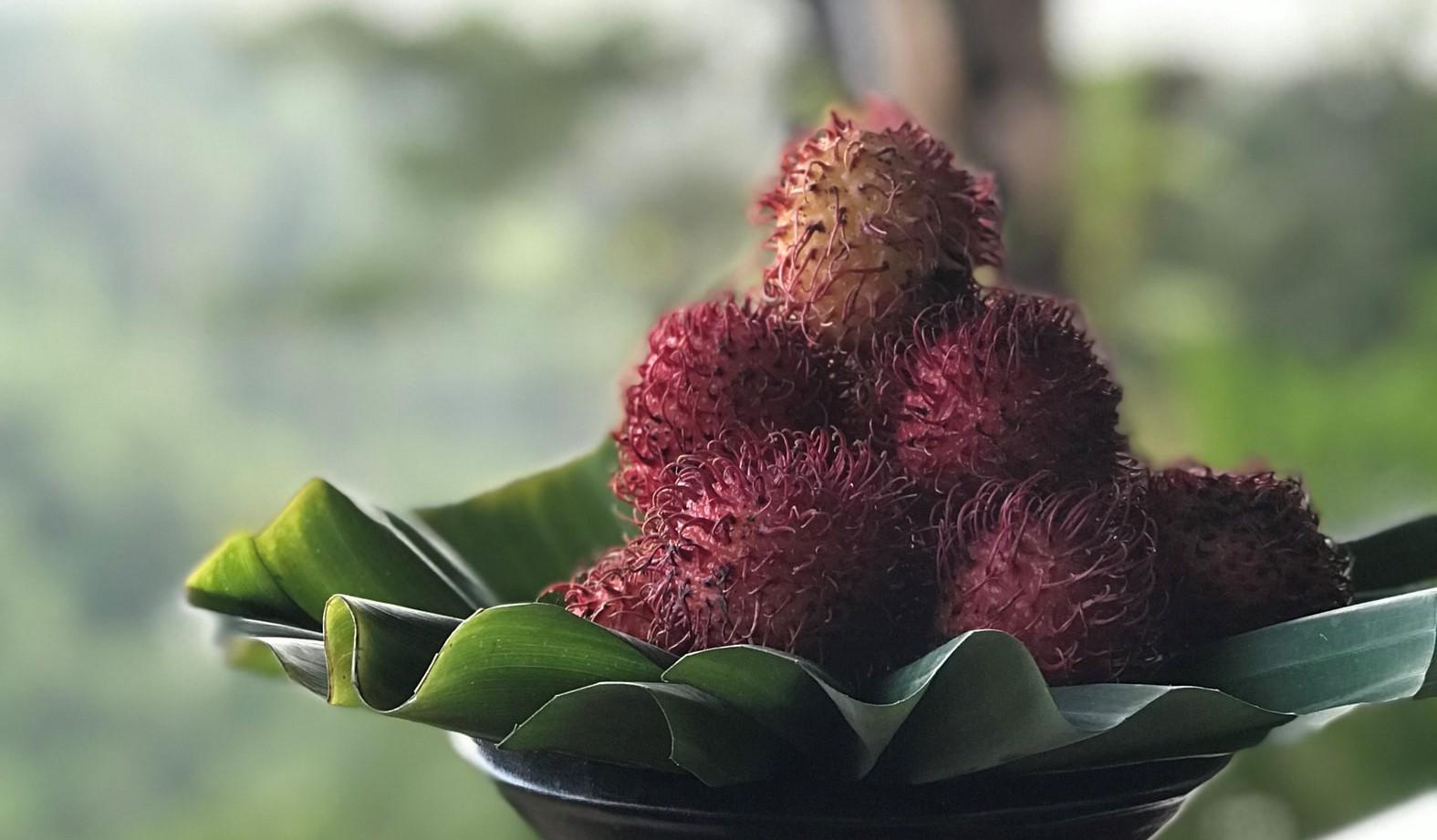 Sri Lanka's Strangest Fruit